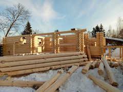 Когда можно заказать строительство дома из зимнего леса?